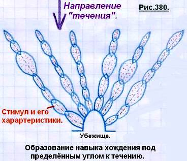 http://www.imageup.ru/img124/1511851/380.jpg