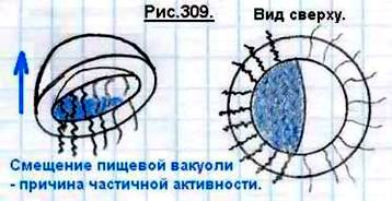 http://www.imageup.ru/img124/1511855/309.jpg