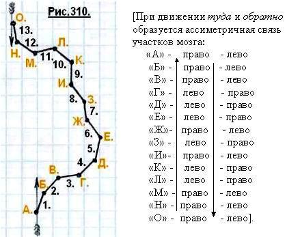 http://www.imageup.ru/img124/1511864/310.jpg