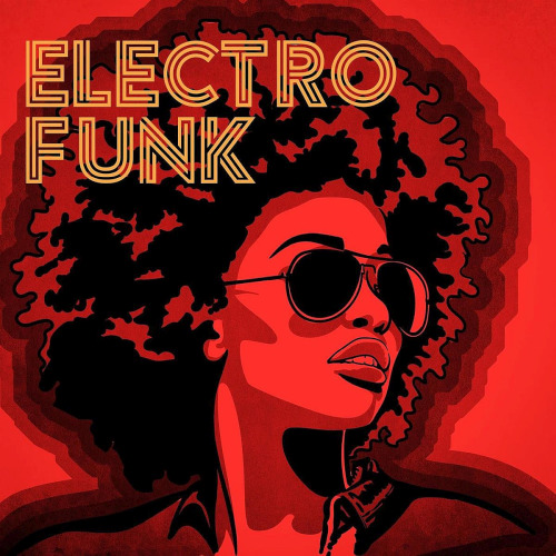 Various Artists - Electro Funk (2020)