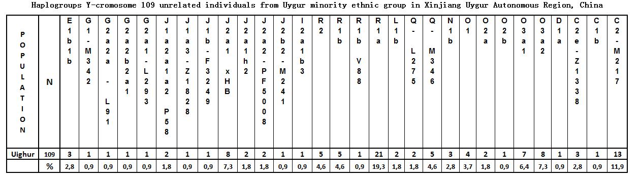 uygur3.png