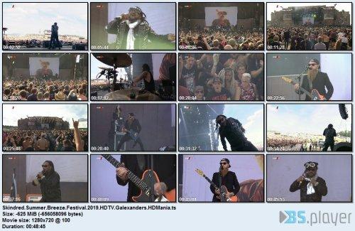 skindredsummerbreezefestival2019hdtvgale