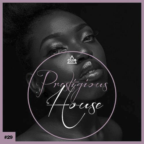 Prestigious House Vol. 29 (2020)