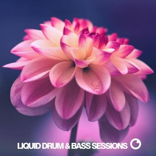 VA - Liquid Drum & Bass Sessions Vol 9 [WEB] (2020) FLAC