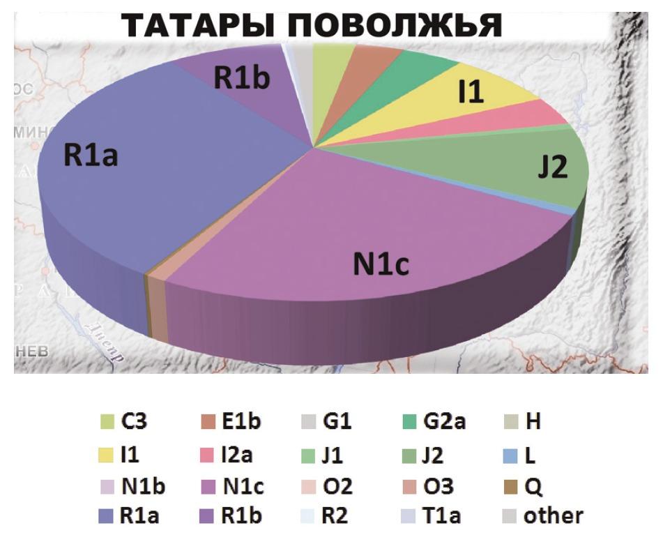 tatar1.jpg