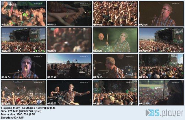 Flogging Molly - Southside Festival (2014) HDTV