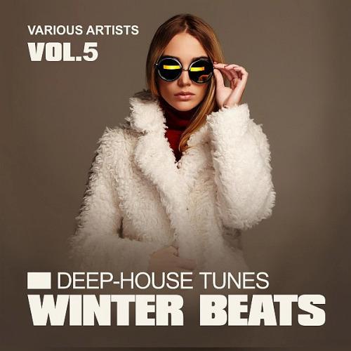 Winter Beats (Deep-House Tunes) Vol. 5 (2020)