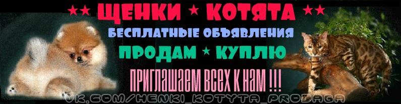 http://www.imageup.ru/img215/2958538/baner_shapka-gruppy-6tch.jpg