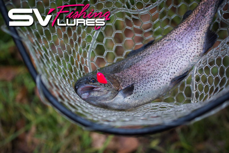 http://www.imageup.ru/img217/2275218/sv-fishing-lures-trout.jpg