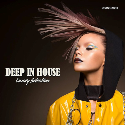 Deep In House (Luxury Selection) (2020)
