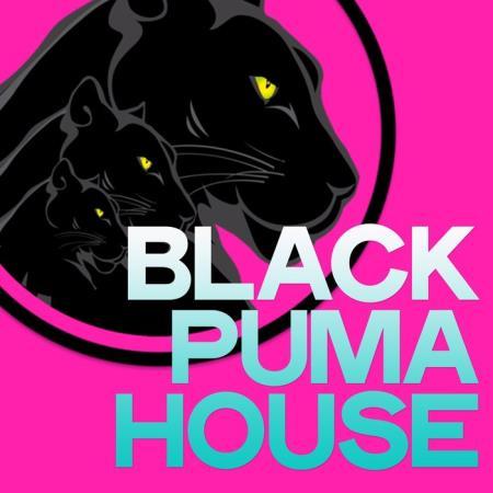 Black Puma House (2020)
