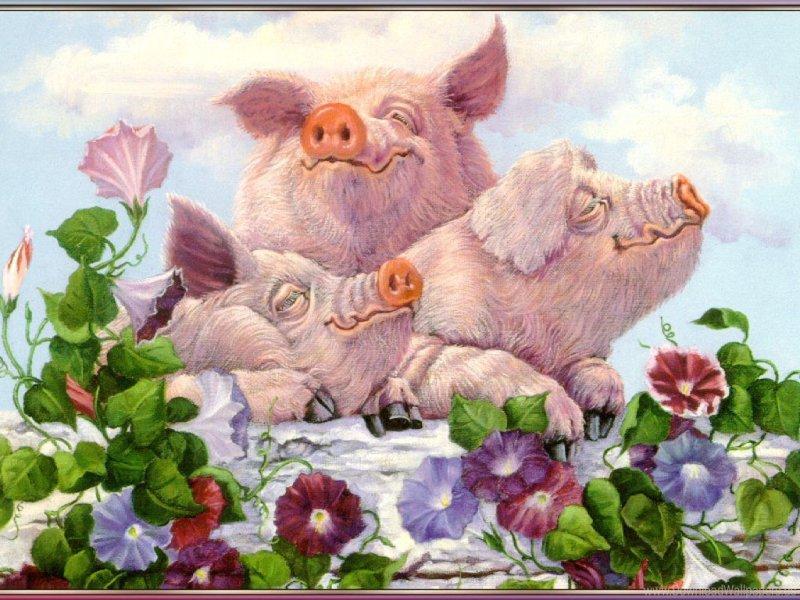 квадратная картинки для декупажа свиньи новогодние убедиться отсутствии спама