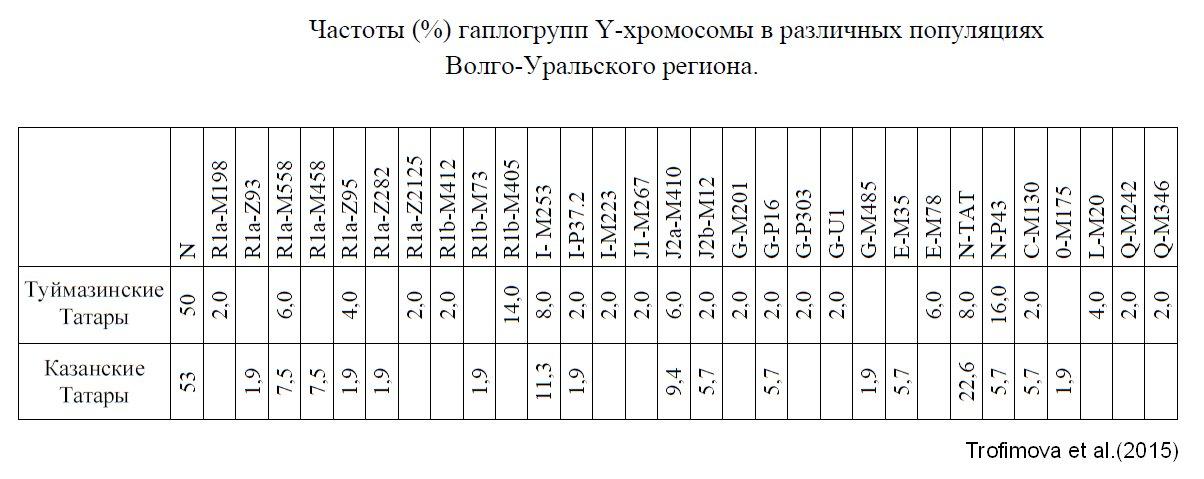 trofimova-chastoty-tatar.jpg