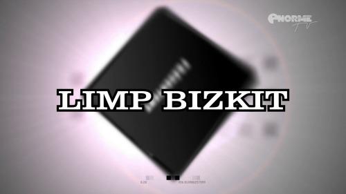 Limp Bizkit - Main Square Festival (2011) HDTV