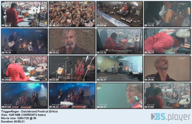 Triggerfinger - Deichbrand Festival (2014) HDTV