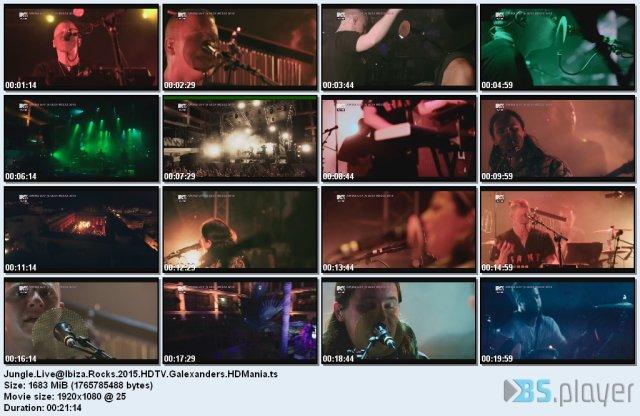 Jungle - Live@Ibiza Rocks