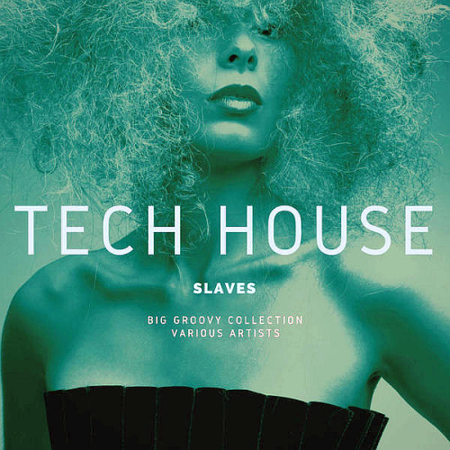 Tech House Slaves (Big Groovy Collection) (2020)