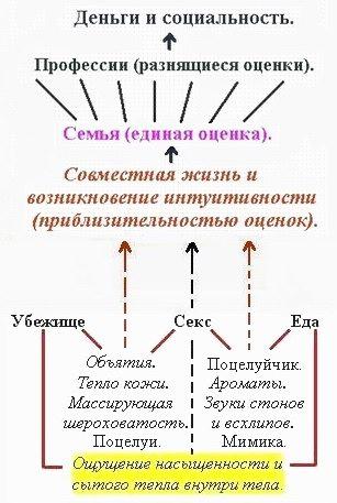 intuitivnost7.jpg