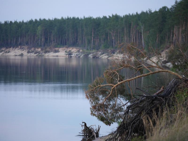 http://www.imageup.ru/img291/1446279/dnerp-lovlya-ryby.jpg