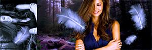 http://www.imageup.ru/img295/916987/bez-imeni-2.jpg