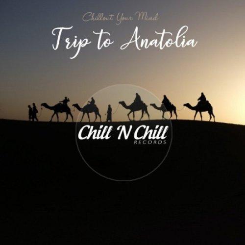 VA - Trip To Anatolia Chillout Your Mind (2021)