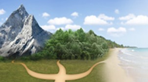 Психологическая помощь онлайн: лучшие сервисы для подбора психолога
