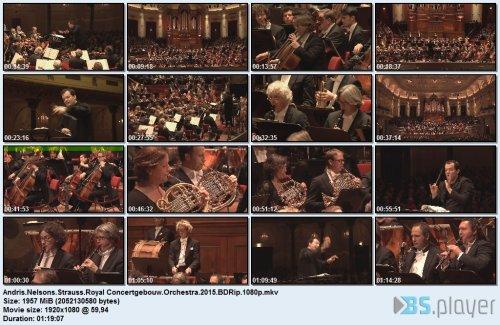 andrisnelsonsstraussroyal-concertgebouworchestra2015bdrip.jpg