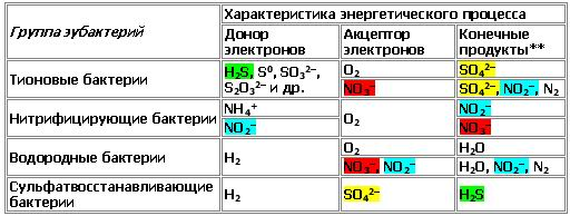 http://www.imageup.ru/img79/1499019/bakterii.jpg