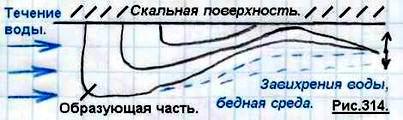 http://www.imageup.ru/img79/1499054/odnokletochnye19.jpg