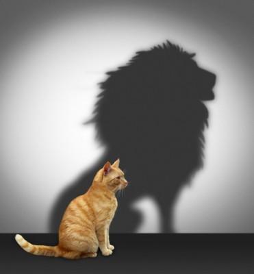 Как самооценка влияет на нашу жизнь и как ее можно поднять
