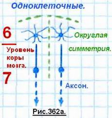 http://www.imageup.ru/img8/1504850/13.jpg