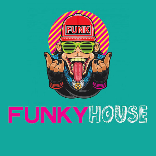 Funky House (The Hot Funky House Music Selection 2020)