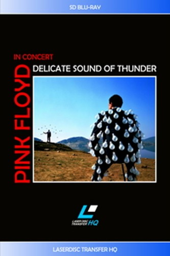 Pink Floyd - Delicate Sound Of Thunder (1989)